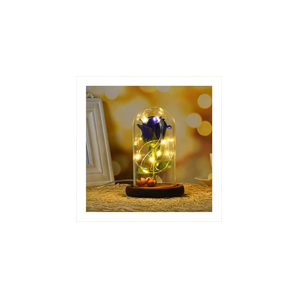 Autoday-Beauty-and-The-Beast-Preserved-Fresh-Rose-Flower-LED-Light-Fallen-Petals-in-a-Glass-Romantic-Wooden-Base-for-Her-Birthday-Anniversary