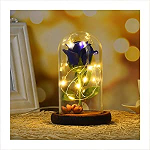 Autoday USB Beauty and The Beast Preserved Fresh Rose Flower LED Light Fallen Petals in a Glass Romantic Wooden Base for Her Birthday Anniversary 27