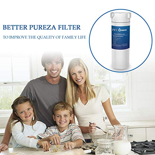 Pureza filters XWF Water Filter, Replacement for GE XWF, XWF Genuine Ge  Refrigerator Compatible with GE French-door - 2 Pack
