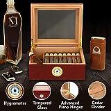 Mantello Royal Glass-Top Cigar Humidor - Humidifier