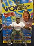 WCW Craig Pittman WWF WWE Wrestling Figure
