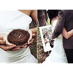 Miss.AJ Vintage Decoration Prop Real Bird Nest 100% Bird Cage Creative Marriage Proposal Wedding Photography Props Wedding Ring Box ,succulent Plant Pot ,candy baskets ,