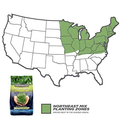 Pennington 100526640 Smart Seed Northeast Mix Grass Seed, 20 LB by Pennington (Image #1)