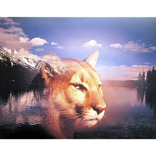 Grand Teton Mountain Spirit Of Lion Animal Wall Decor Art Print Poster  (16x20)