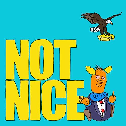 Not Nice (feat. Shreve) -