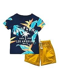 KISBINI Boys California Summer clothes Set T shirt and Short