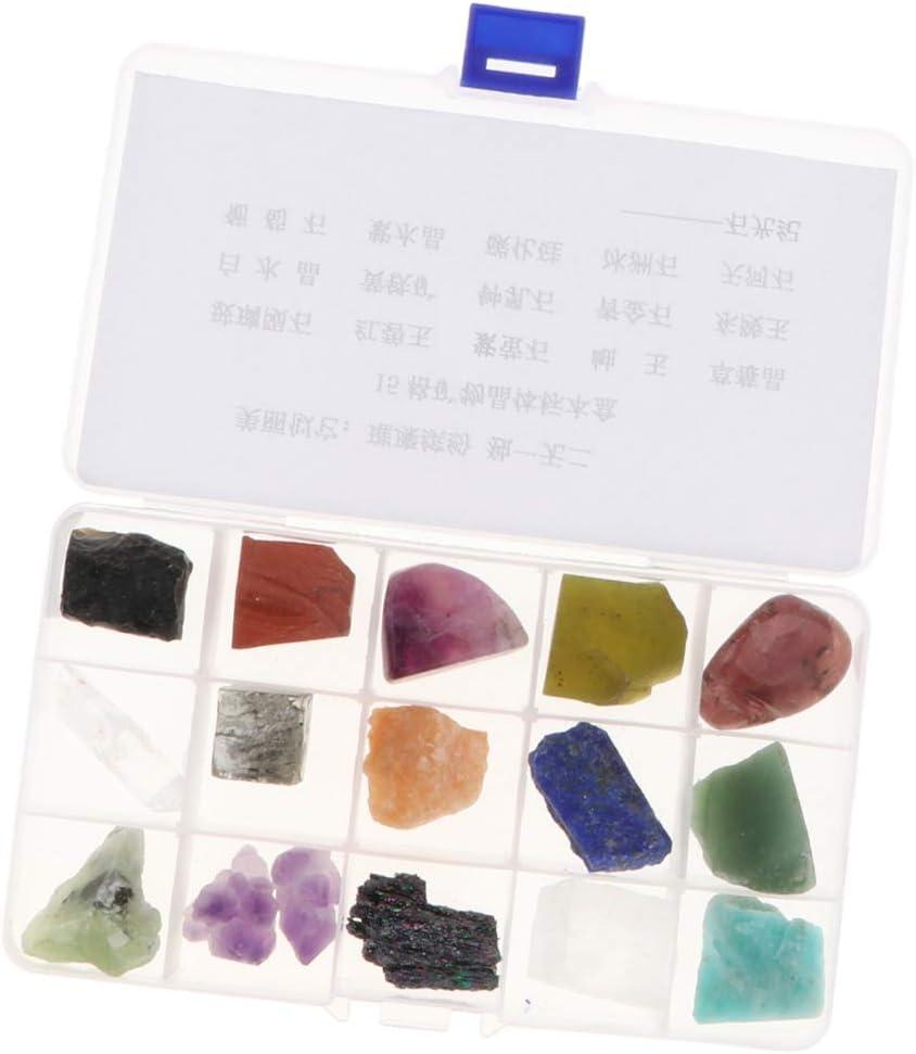 15x Muestra de Piedras Preciosas Minerales y Rocas de Mundo con Caja de Almacenamiento para Colecciones Estudio Geológico: Amazon.es: Juguetes y juegos