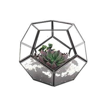 Pentagon Glas Geometrische Terrarium Air Pflanzen Box Topf Schmuck Kerze