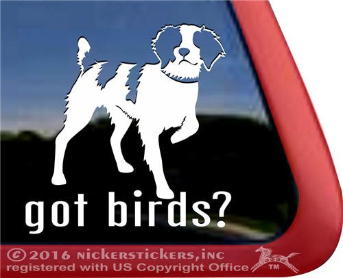 Got Birds? Brittany Gun Dog Decal Vinyl Window Auto Truck Decal Sticker