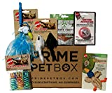Prime Pet Box Premium Cat Gift Box Care Package with HavePaws Jerky Chips
