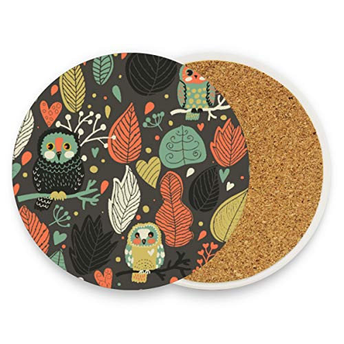 Ceramic Coaster Set of 2 Absorbent Coaster with Protective Cork Base Owl Coasters for Drinks Coffee Mug Glass Cup Place Mats Home Decor Style (Cork Owl Placemat)