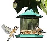 Gazebo Bird Feeder By PetsN'all - Transparent, Hanging Bird Feeder in Hexagon Shape, Handles Up To 2.25 Lbs