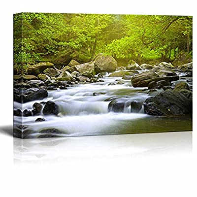 Canvas Prints Wall Art - Mountain River in The Wood | Modern Home Deoration/Wall Art Giclee Printing Wrapped Canvas Art Ready to Hang - 16