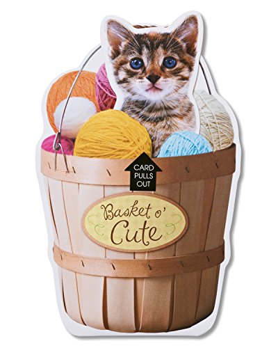 American Greetings Funny Basket O' Cute Birthday Card ()