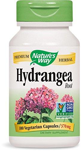 Nature#039s Way Hydrangea Root 370 mg 100  Capsules