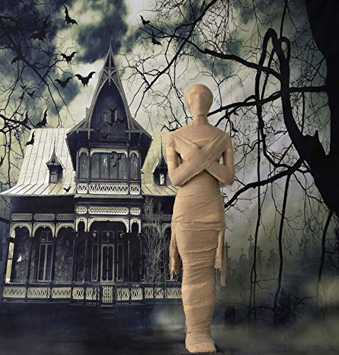 Halloween Door Decorations Mummy (Haunted Hill Farm HHMUM-1F Life-Size Standing Wrapped Mummy Covered Indoor/Outdoor Halloween Decoration, Color)