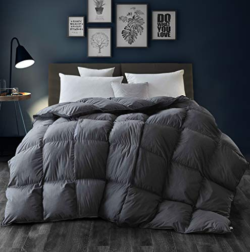 Siberian Goose Down Comforter Queen Size Warmth Duvet Insert - All Season - Luxury 100% Cotton Hypoallergenic 1000 Thread Count 750 Fill Power with Tabs Gray