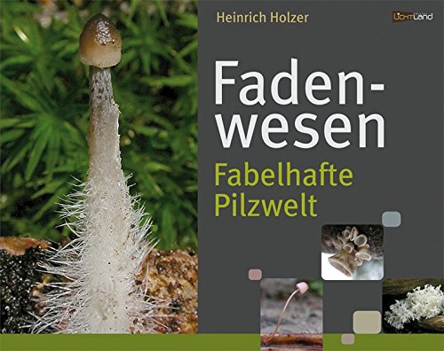 Fadenwesen: Fabelhafte Pilzwelt
