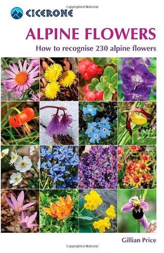 Alpine Flowers: How to Recognize Over 200 Alpine Flowers