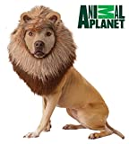 California Costumes Collections Animal Planet Lion Dog Costume, Large