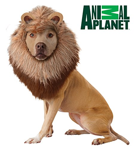 [California Costume Collections Animal Planet Lion Dog Costume, Large] (Dog Lion Costume Large)
