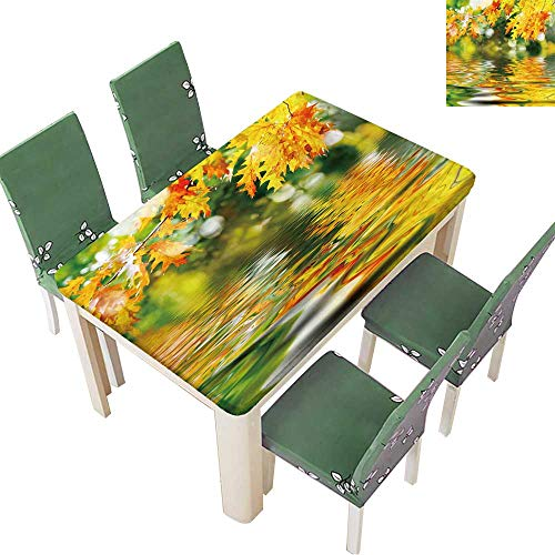 d Outdoor Tablecloth Colorful Autumn Leaves Reflecting in The Water Liquid Spills Bead up 52 x 108 Inch (Elastic Edge) ()