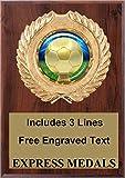 Soccer Plaque Trophy Award