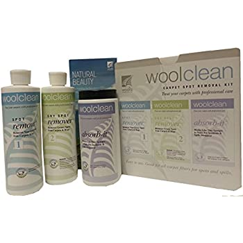 Amazon Com Wool Clean Carpet Spot Removal Kit Health