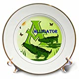 3dRose cp_52978_1 Decorative Animal Alphabet Art for Children a is for Alligators at The Swamp Porcelain Plate, 8-Inch