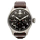 IWC Pilot Mechanical (Automatic) Brown Dial Mens Watch IW5038-01 (Certified Pre-Owned)