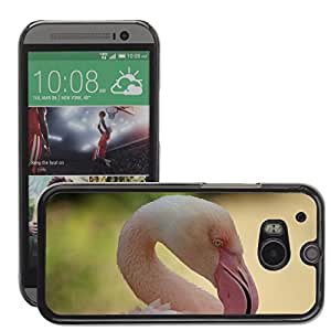 Hot Style Cell Phone PC Hard Case Cover // M00112616 Zoo Flamingo Bird // HTC One M8