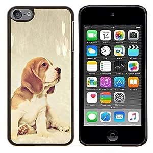 Beagle raposero perro de perrito del bebé- Metal de aluminio y de plástico duro Caja del teléfono - Negro - iPod Touch 6