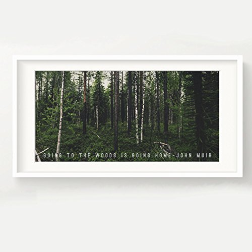 (Urban Decal John Muir Forest Print - Going to The Woods is Going Home. - Nature, Quote, Panoramic, Trees, Poster, Picture 12x24)