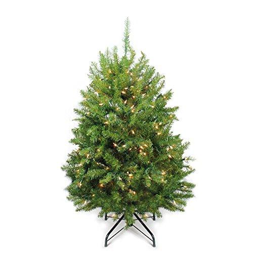Northlight 4' Pre-Lit Innsbruck Fir Full Artificial Christmas Tree - Clear (4' Pre Lit Tree)