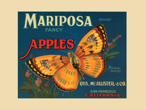 Mariposa Butterfly San Francisco California Fancy Apples Produce in America USA Fruit Crate Label Vintage Poster Repro 12