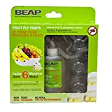 BEAPCO 6-Pack Drop-Ins Fruit Fly Traps