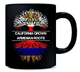 CALIFORNIA GROWN, ARMENIAN ROOTS State and Nationality USA America - Mug