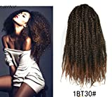 Marley Afro Braid Ombre Hair Extensions, Kinky Curly Bulk Twist Crochet Braids 32 Strands/ Pack, 100g (Black to Medium 1BT30)