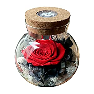SANRAN Forever Flower, Preserved Eternal Real Rose Present with Led Mood Light, Best Gift for Thanksgiving Day, Birthday, Anniversary, Valentine's Day, Christmas 87