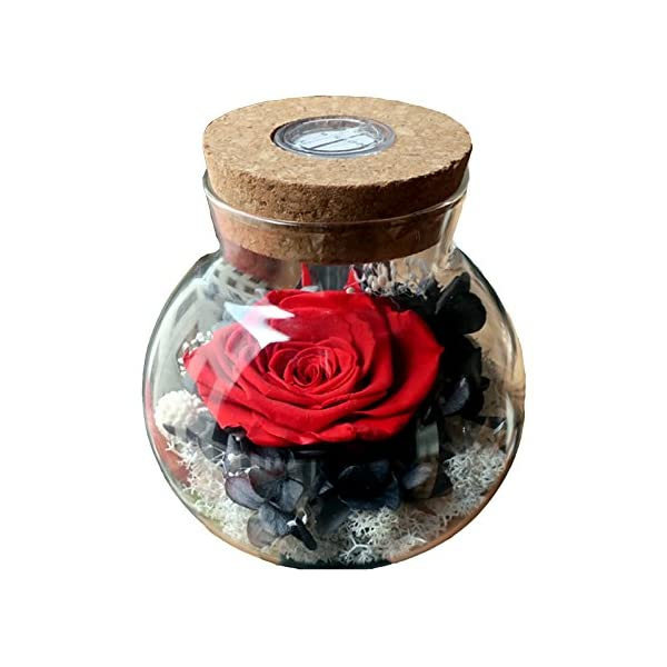 SANRAN-Forever-Flower-Preserved-Eternal-Real-Rose-Present-with-Led-Mood-Light-Best-Gift-for-Thanksgiving-Day-Birthday-Anniversary-Valentines-Day-Christmas