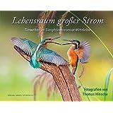 Lebensraum großer Strom: Tierwelten im Biosphärenreservat Mittelelbe (edition stekofoto, Band 4)