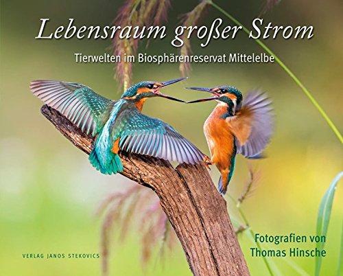 Lebensraum großer Strom: Tierwelten im Biosphärenreservat Mittelelbe (edition stekofoto)