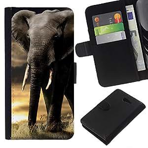 All Phone Most Case / Oferta Especial Cáscara Funda de cuero Monedero Cubierta de proteccion Caso / Wallet Case for Sony Xperia M2 // Elephant Trunk Sunset Africa Indian Tusk