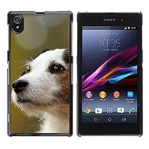 PC/Aluminum Funda Carcasa protectora para Sony Xperia Z1 L39 C6902 C6903 C6906 C6916 C6943 Jack Russell Terrier Dog Canine / JUSTGO PHONE PROTECTOR