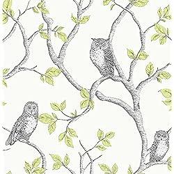 Fine Decor 2900-40637 Linden Owl Wallpaper, Green