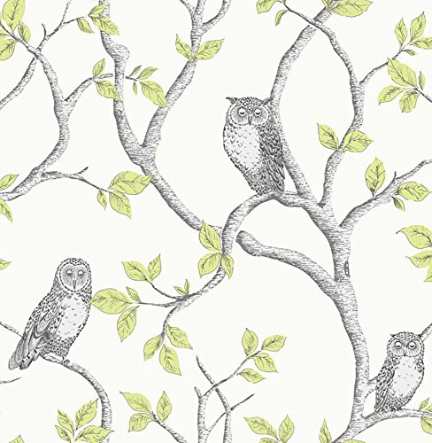 Linden Wallpaper - Fine Decor 2900-40637 Linden Owl Wallpaper, Green