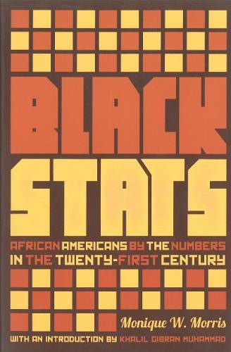 black-stats-african-americans-by-the-numbers-in-the-twenty-first-century