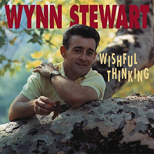 Wishful Thinking by Stewart, Wynn