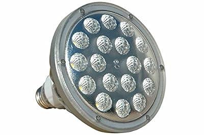 25W LED PAR38 Spot / Flood Light - 2500 Lumens - Dimmable by Voltage Regulation - 277V 1P