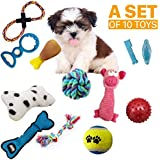 Dog Toys Set Ball Rope and Chew Squeaky Toys for Small Medium Dog~10 Pack